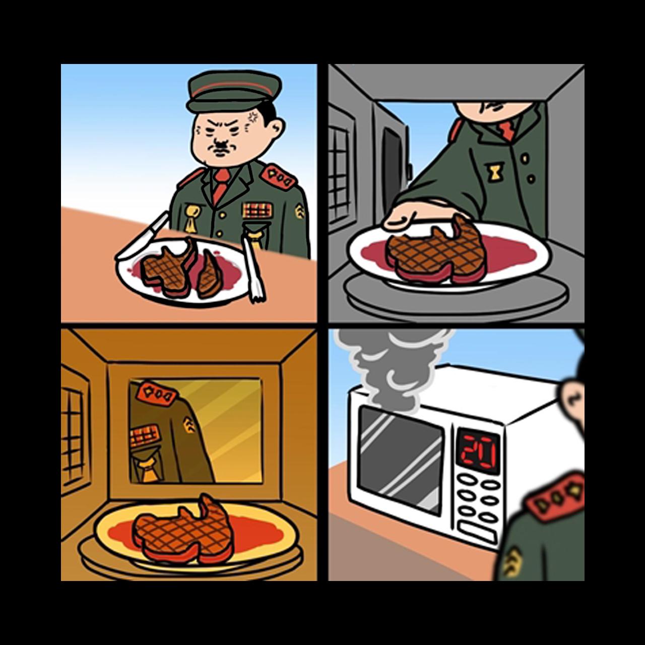 ไข่แมว ยุทธศาสตร์ชาติ 20 ปี คสช