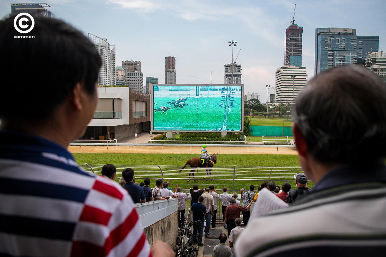 #สนามม้าราชกรีฑาสโมสร #สนามม้าฝรั่ง #Photoessay #Culture #แข่งม้า #Horseracing