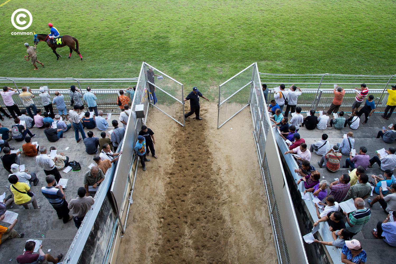 #สนามม้าราชกรีฑาสโมสร #สนามม้าฝรั่ง #Photoessay #Culture #แข่งม้า