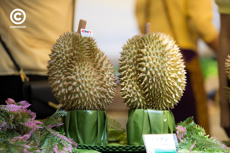 thai fest