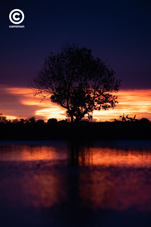 #PHOTOESSAY #sunset #พระอาทิตย์ตก #WORLD #becommon